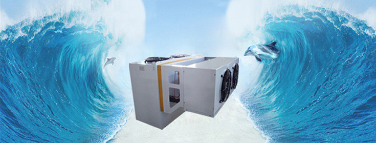 China best Cold Storage Room on sales