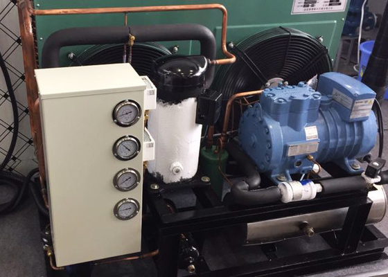 China Professional Air Cooling Hermetic Condensing Unit For Hospital Medicine Chiller supplier