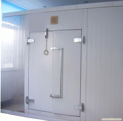 China Manual Double Swing Insulated Walk In Cooler Sliding Door For Cold Storage Room supplier