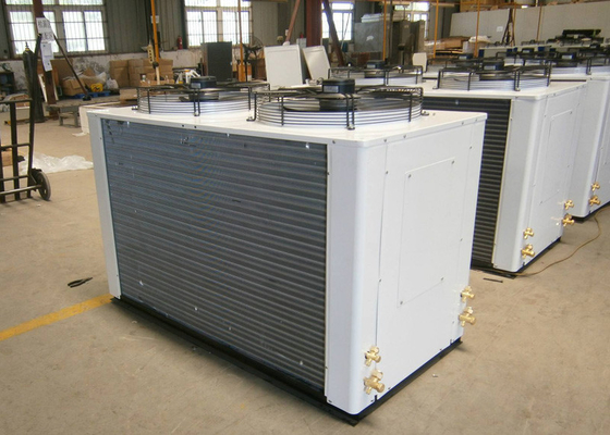 China 6HP Low Temperature Copeland Refrigeration Condensing Units For Indoor And Outdoor supplier