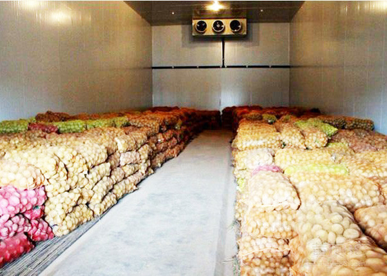 China Vegetable Or Fruit Cold Storage Room With 43kg / m³ Insulation PU Panel supplier