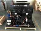 China Customized Compressor Condenser Unit , Copeland Semi Hermetic Condensing Units factory