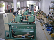 100HP Cold Storage Screw Compressor Unit , Refrigeration Screw Compressor