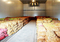 Vegetable Or Fruit Cold Storage Room With 43kg / m³ Insulation PU Panel