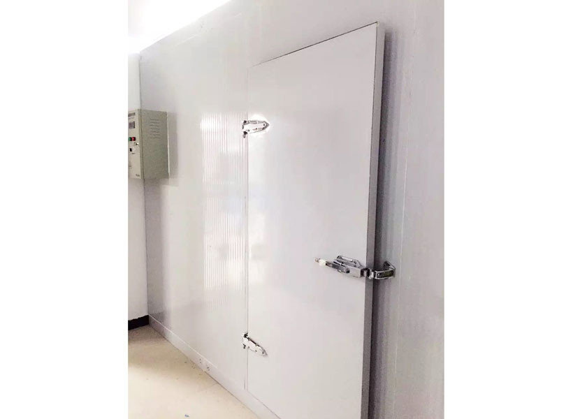 Professional Walk In Cooler Door Hinges Types For Customized Cold Room